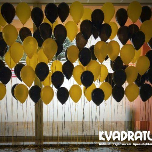 Helio balionų foto sienelė